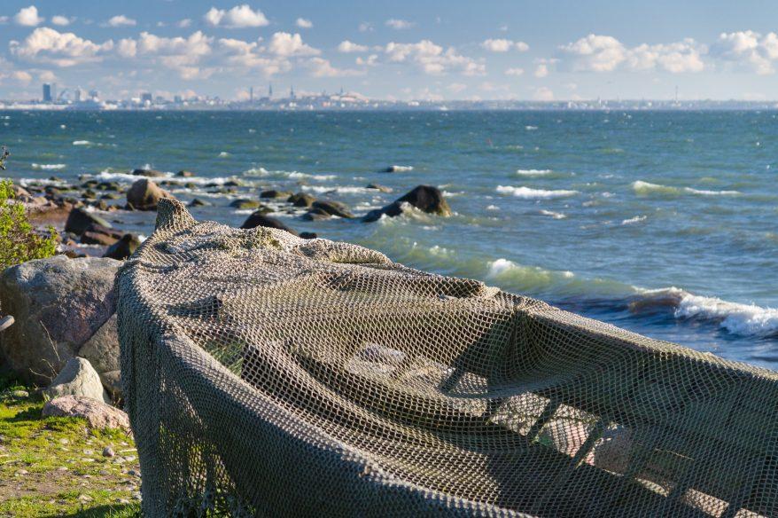 Kuvassa kalaverkolla peitetty vene, taustalla Tallinna.