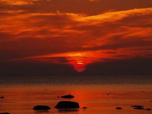 sunset over the sea. beautyful estonian summer.